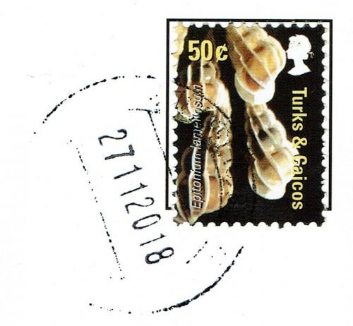 190213_0003.jpg