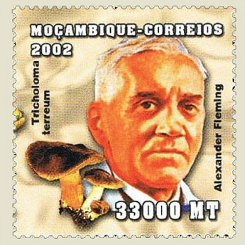 Mozambique-2002-Alexander-Fleming-true.jpg
