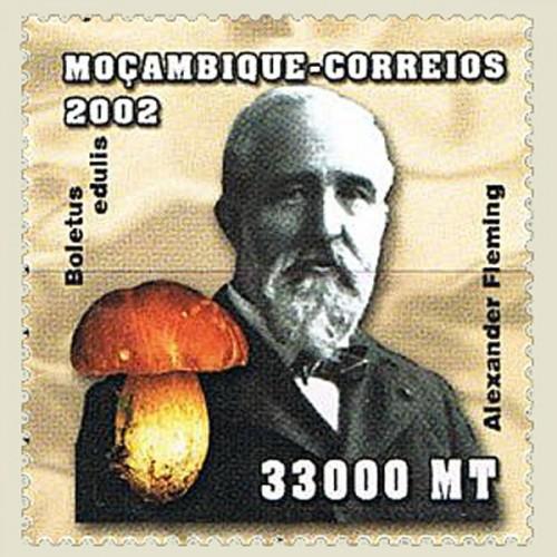 Mozambique-2002-Alexander-Fleming.jpg
